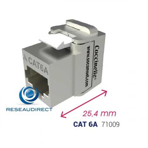 Connecteur-coccinelle-Cat6A-600