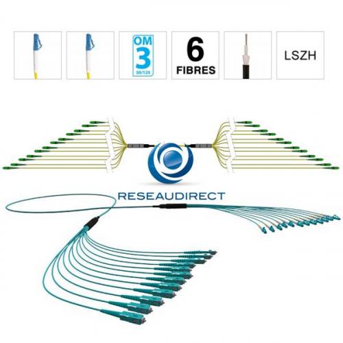 Netkea NTKT06LC.LC.53LTR020 trunk 6 fibres préconnectorisées structure libre renforcée LTR 2 mm 50/125 OM3 LC / LC lg 20 m