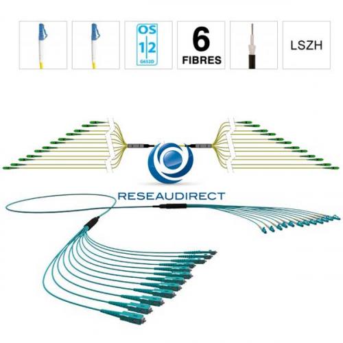 Netkea NTKT06LC.LC.09LTR020 trunk 6 fibres préconnectorisées structure libre renforcée LTR 2 mm 9/125 OS1/OS2 LC / LC lg 20 m