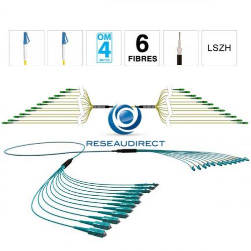 Netkea NTKT06LC.LC.54LTR020 trunk 6 fibres préconnectorisées structure libre renforcée LTR 2 mm 50/125 OM4 LC / LC lg 20 m