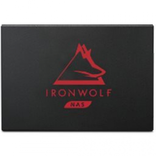 SSD IronWolf 125 500go