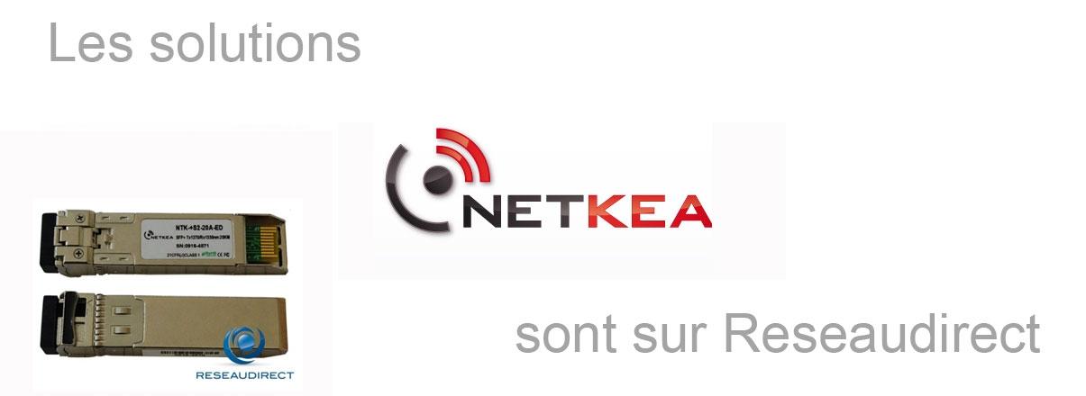 Solutions Netkea Fibre optique sur Reseaudirect.com